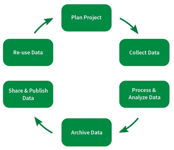 research data life cycle