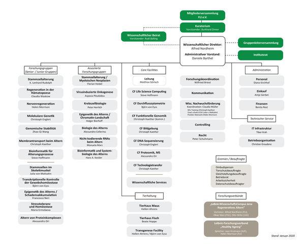 Struktureller Aufbau des FLI