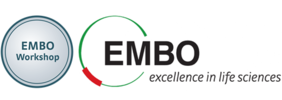 EMBO Workshop Logo