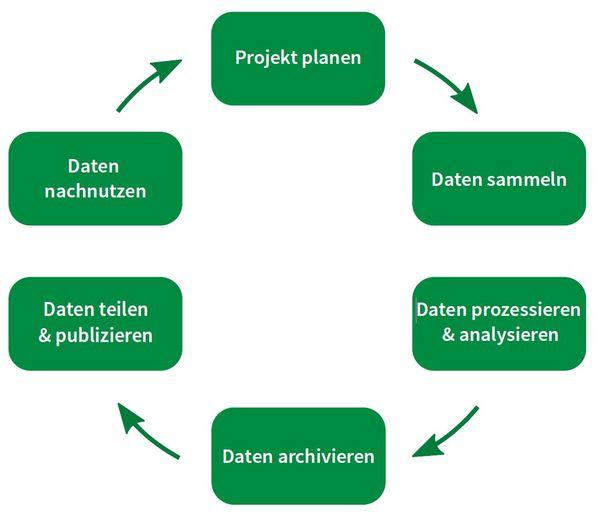 Lebenszyklus von Forschungsdaten