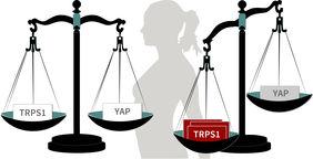 TRPS1