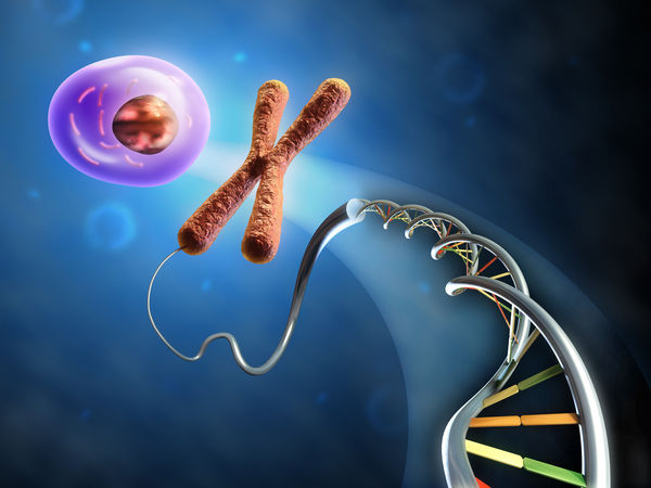 Code of life: DNA structured as a double helix