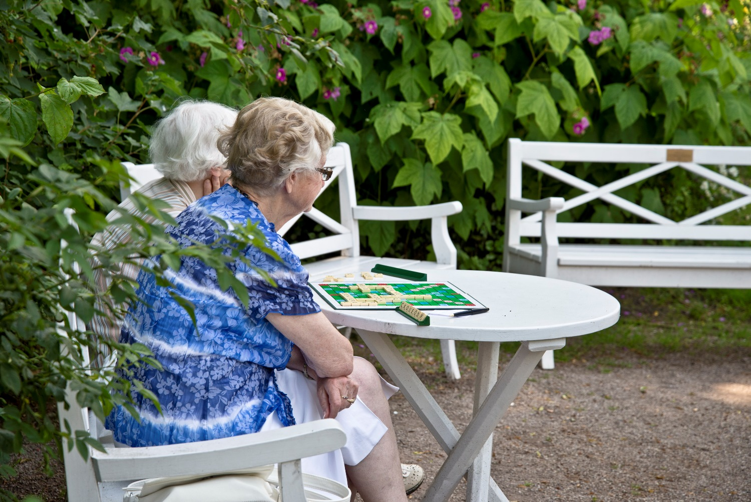 Old ladies playing Scrabble
