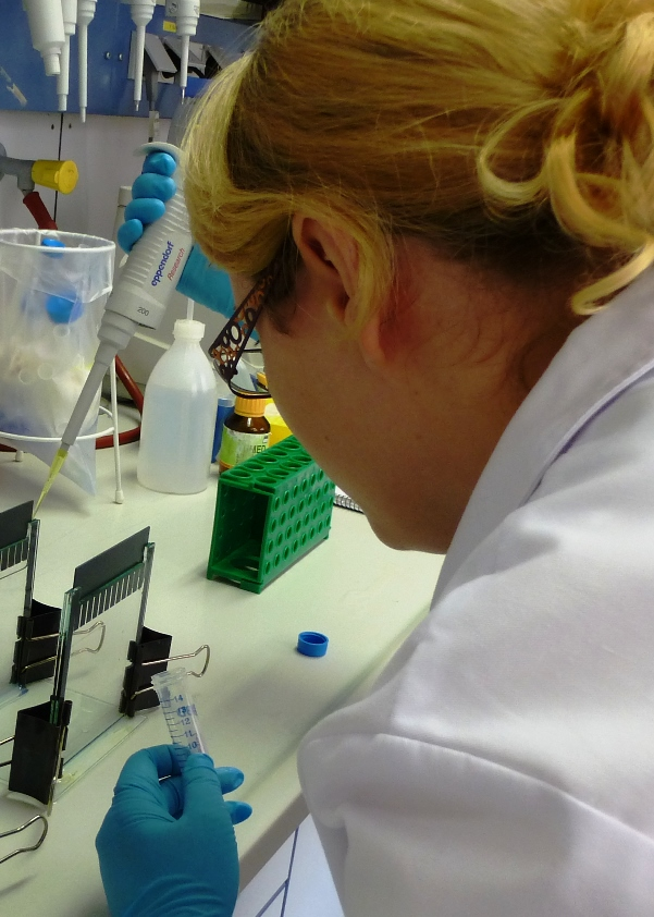 Trainee Biology Lab Assistant at the FLI